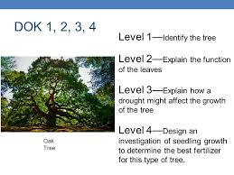 Depth Of Knowledge Dok Ppt Download
