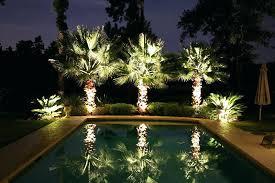 palm tree yard lights palm tree landscape lighting palm tree