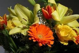 Japanese Language Of Flowers - japanese language of flowers