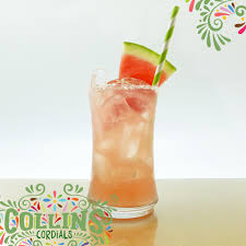 watermelon mojito watermelon mojito u2014 collins cordials