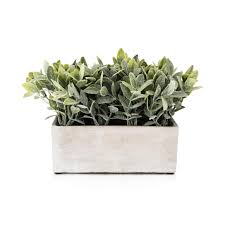 woolworths home decor artificial plant in cement pot woolworths co za