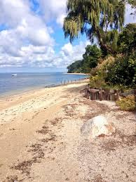 target east islip ny hours black friday 17 best memories images on pinterest long island ny long island