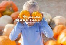 Cottonwood Heights Thanksgiving Day 5k Utah Valley Events Calendar