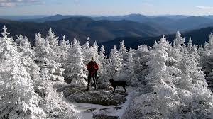 winter aopa