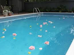 swimming pool decorations ideas u2014 home landscapings