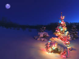 merry vacation gifts tree happy beautiful