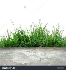 concrete floor and green grass stock photo 62353669 shutterstock