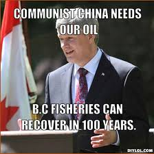Oil Meme - war for oil china reaps the benefits of america s 10 year