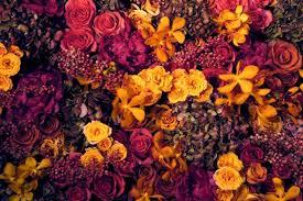 an autumn affair prestonbailey com
