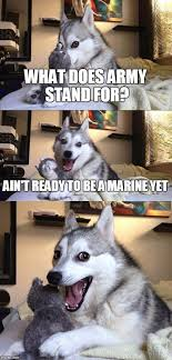 What Does Meme Stand For - bad pun dog meme imgflip