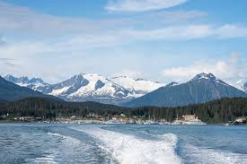 Alaska wild swimming images Best cruises for nature lovers cruise critic jpg