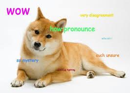 Best Doge Memes - nice 18 best doge memes images on pinterest wallpaper site