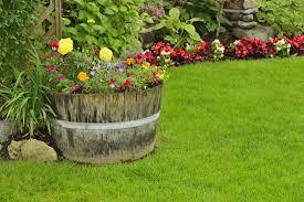 perennial garden vegetables garden to table edible perennials for your planters