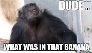 Chimp Meme - tripping chimp by kinokiro meme center