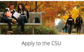 csuf news center new application portal launches