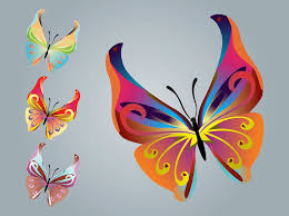 butterfly designs vector graphics freevector com