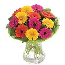 send flowers online send flowers to bangalore gerberas flowers to bangalore flowers