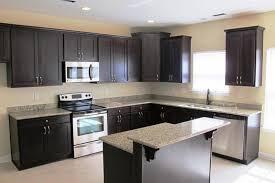 Modern Cabinets Kitchen Kitchen Ideas With Espresso Kitchen Cabinets Espresso Painted