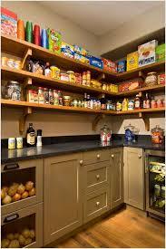 Kitchen Pantry Shelving by 15 Smart Pantry Storage And Organization Hacks