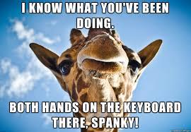 Giraffe Meme - judgemental giraffe meme on imgur