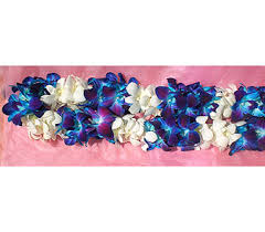 Graduation Leis Graduation Lei Delivery Berkeley Ca Ashby Flowers