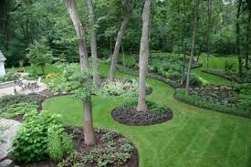 landscaping backyard entracing shade ideas pictures gardening