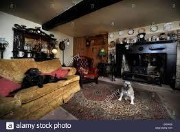 traditional british living room interior design stock photo