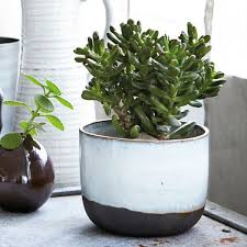 planters awesome modern planter pots modern plant pots outdoor
