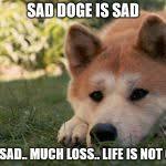 Shibe Meme Maker - sad doge meme generator imgflip