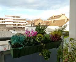 blumen fã r balkon blumen fã r den balkon 9 images garten neu gestalten vorher