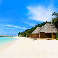 beach bungalows on the tropical island wallpaper beach wallpapers