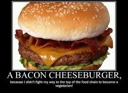 Bacon Memes - bacon memes baconcoma com page 35