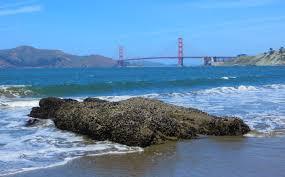 beaches in san francisco ca california beaches
