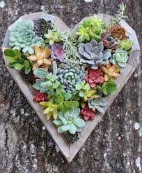 planter for succulents diy small heart planter living vertical wall planter planters