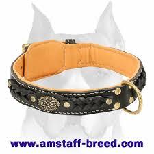 Comfortable Dog Collar Amstaff Nappa Padded Braided Leather Dog Collar C43 1011 Nappa