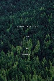 things take time inspiration quote motivationals