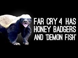Honey Badger Memes - honey badger know your meme