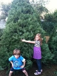 christmas archives cool mom funny videos on parenting and pop