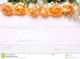 Peach Color by Frame Or Border From Peach Color Roses Flowers On White Wooden