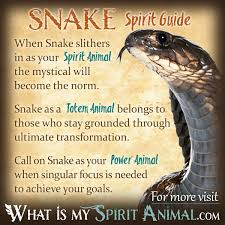 Meaning Of Comfortable by Snake Symbolism U0026 Meaning Spirit Totem U0026 Power Animal
