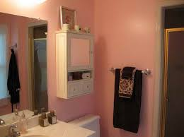 Bathrooms With White Cabinets Bathroom Delightful Lowes Medicine Cabinets With Mirror On White