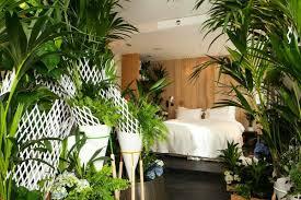 plantes dans une chambre peut on mettre des plantes dans une chambre coucher plante verte a