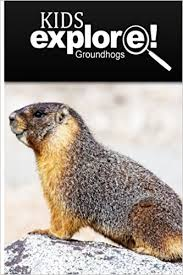 groundhogs kids explore animal books nonfiction books ages 5