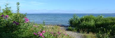 petoskey michigan lodging packages bay view inn