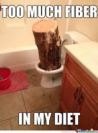 Meme Center Login - was this joke really worth putting a log in your toilet by