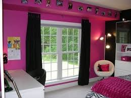 pink and black zebra bedroom design dazzle bright pink wall