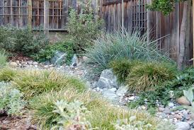california native plant gardens kelly marshall garden design specializing in beautiful