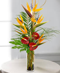 tropical flower arrangements tropical escape bouquet flowers carithers florist same