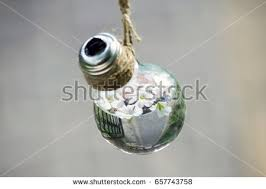 Flower Light Bulbs - light bulb vase stock images royalty free images u0026 vectors