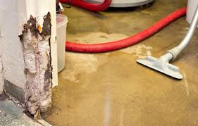 What To Do When Your Basement Floods by Drying Out A Wet Basement This Old House